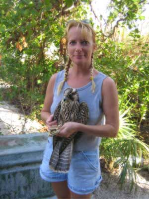 Kelly with Peregrine Falcon just before it is to be released.